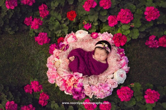 Amman newborn outdoor session photographer
