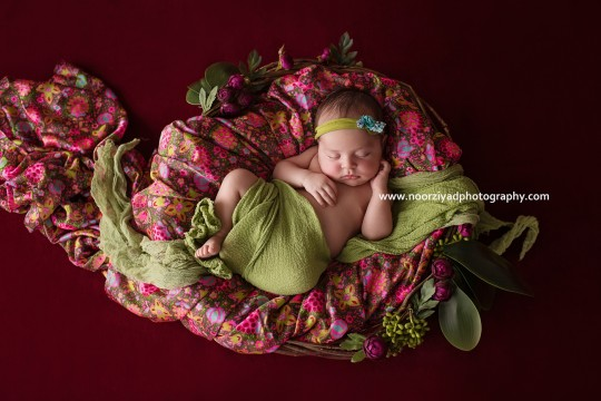 amman best newborn photographer